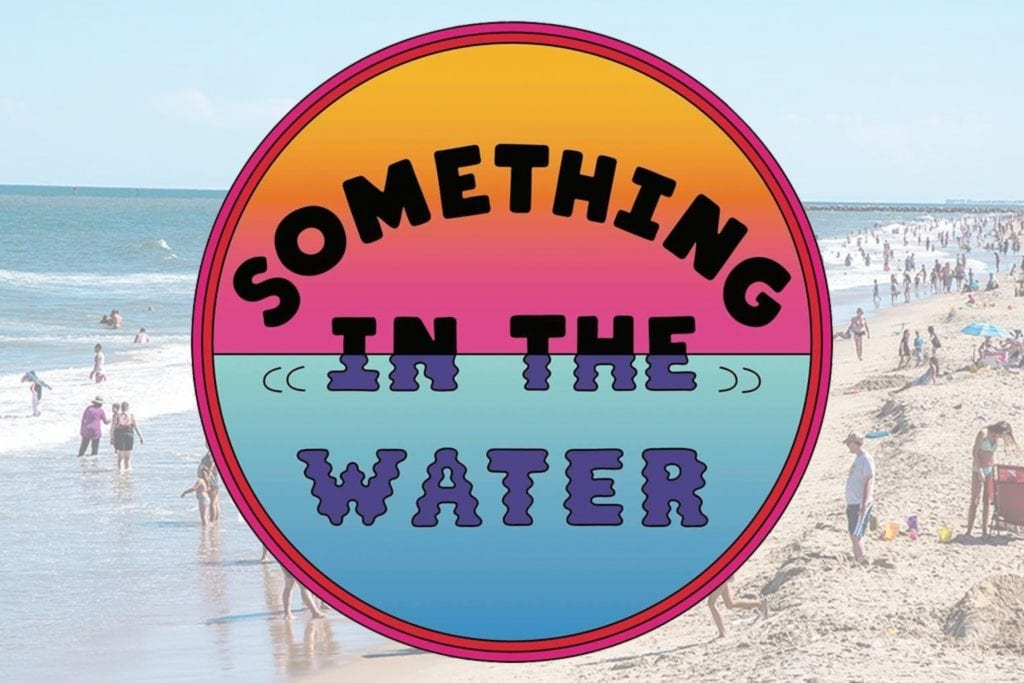 Something in the Water 2020